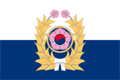 Republic of Korea Army (ROKA) Logo